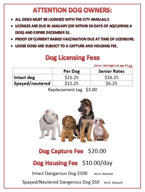 Dog Licensing and Capture